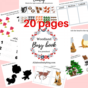 Printable busy book