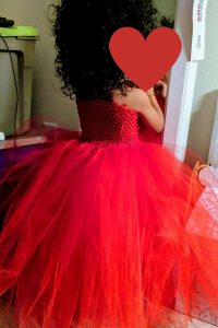 diy red princess tulle dress